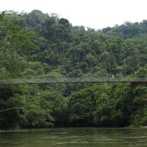 New rio canande bridge by David Agro