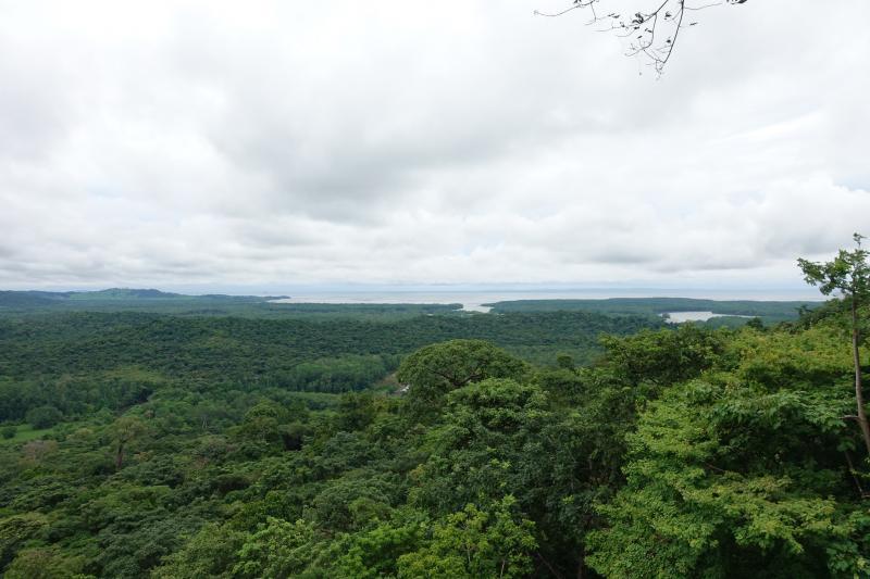 Panama Bay from Rio Plantanares (photo: Scott Hecker)