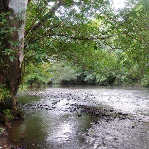 Rio Hondo (photo: Scott Hecker)