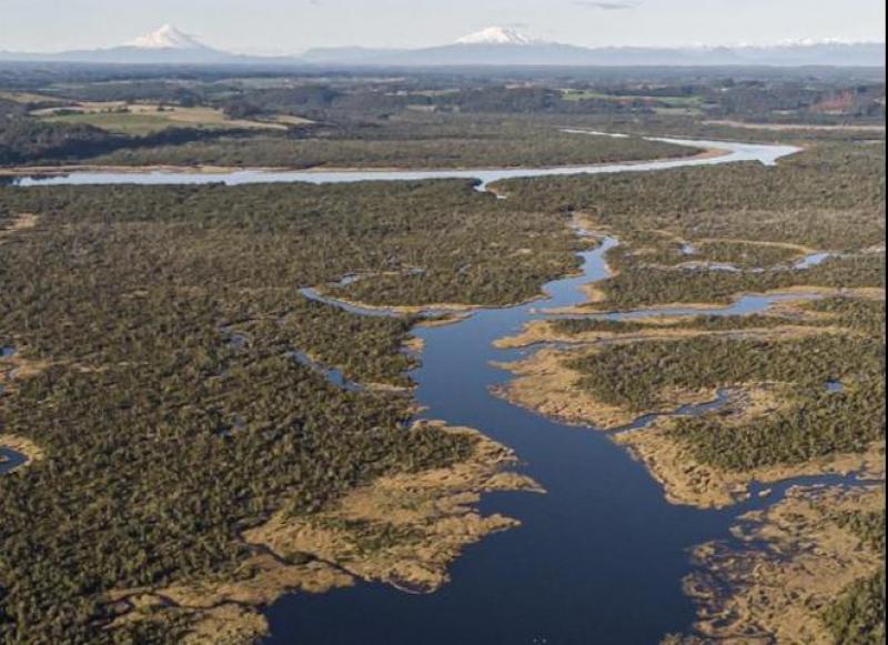 Humedal-rio-chepu-los-lagos
