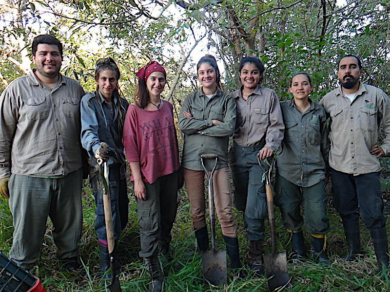 project field crew